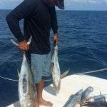 Adamcatch